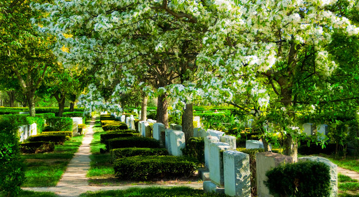 New Montefiore Cemetery in West Babylon, NY